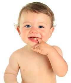 Die ersten Zähne wachsen und das schmerzt oft
