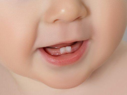 Wenn die ersten Zähne kommen - alles über das Zahnen